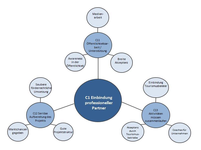 """Weitere Auflösung des Parameters """"Einbindung professioneller Partner"""" in die vierte Strukturkreisebene"""