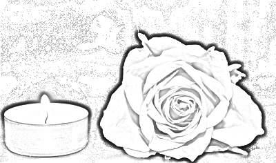 rose-1273740_400